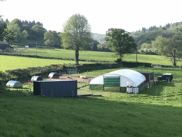 Plump Hill Farm | Small Holding | High Welfare Meat Producer | Forest of Dean