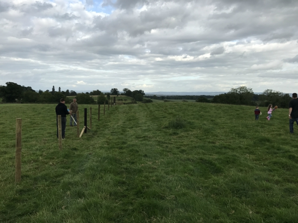Plump Hill Farm | Fencing a Small Holding | High Welfare Meat Producer | Forest of Dean
